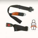 Ceinture sécurité arrière noire manuelle (2 points d...